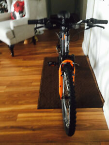 New Adult Bike