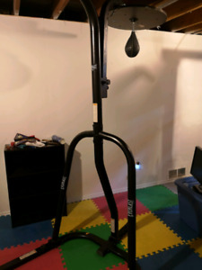 everlast heavy bag stand with speed bag