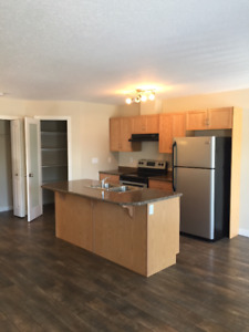 2 Rooms for Rent in New Fourplex in Camrose May-August