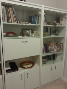 Sturdy Bookcases with glass doors