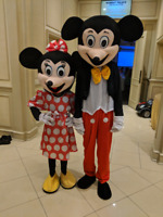 Rent Mickey and Minnie mouse costume