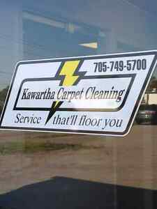 SEEKING CARPET AND UPHOLSTERY CLEANERS