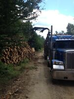 Log truck driver wanted (straight trailer)
