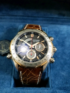 Citizen The Signature collection eco-drive watch