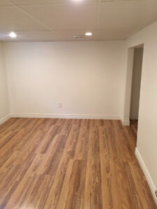 Cute 1-bedroom basement apartment in central location!