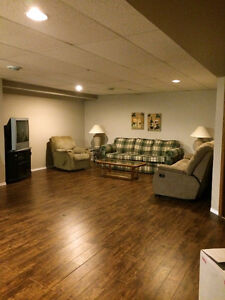 Shared house to rent with semi private basement area