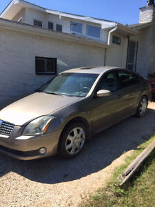 2004 Nissan Maxima Se Other