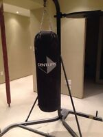Everlast punching bag set