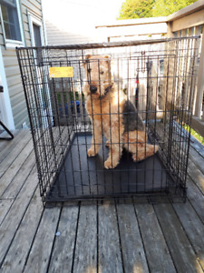 Large folding wire dog kennel