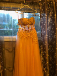 Gorgeous Prom Dress (Only Worn Once, Amazing Condition!)