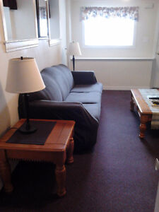 Central, Clean, Quiet, Furnished 1 Bedroom Apt. - Nov 1