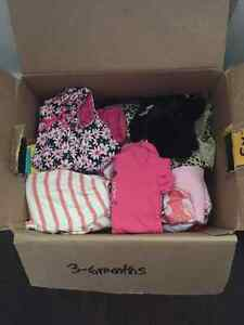 Box of girls 3-6 month clothing