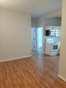 1br apartment Montague