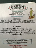 Pest control gift certificate