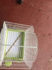 Small bird cage while