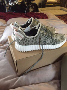 Adidas Boost 350 Turtle Dove - Brand New