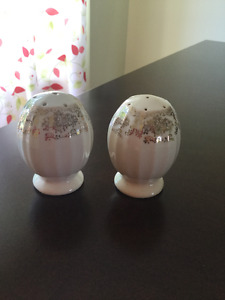 Limoges China Salt and Pepper Shakers