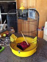 Accessoires pour oiseaux perroquets