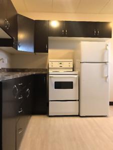 Beautiful East Side 1 bedroom, New Floor & Kitchen - $895