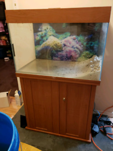 40g tank and stand