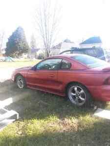Mustang 97 besoins pompe à eau et stater doit partir vite faite