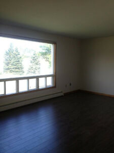 Spacious Two Bedroom - Carpet Free