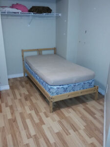 One room in a students house on California Ave Windsor Region Ontario image 2