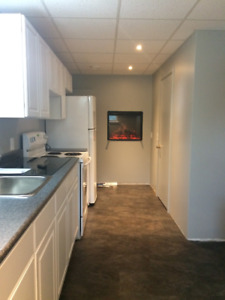 Updated 1 bed / 1 bath apartment with new kitchen and bathroom
