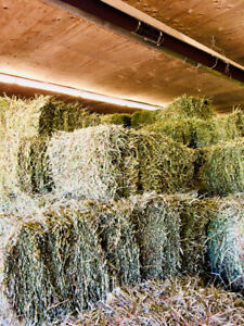 First cut 2018 small square bales