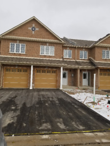 3 Bdrm newly constructed townhouse available for rent Feb 1st 19