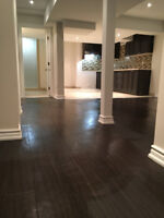 Basement finishing & home reno(Low Prices)
