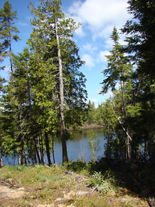 4-ACRE LOT WITH 230 FEET ON THE SALMON RIVER NEAR CHIPMAN, NB