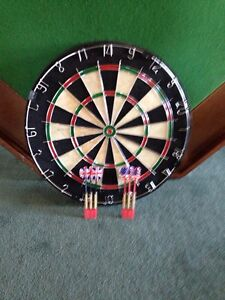 Dart board, brand new, never used