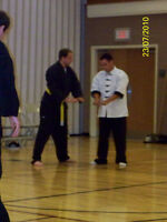 Do YOU qualify for FREE Martial Arts Classes???