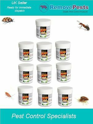 10 X bed bug Bombs bedbugs silverfish carpet moth Insecto Midi 15g Treatment