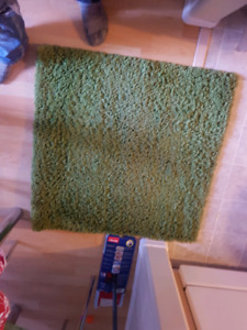 kitchen shag rug $5.00