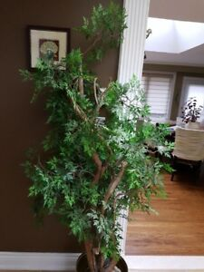 Artifical Indoor Tree 6Foot Tall