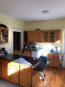 large 5 bedroom  2 mins to Dal available May 1