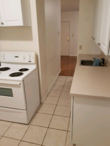 1 Bedroom Apt Available Oct 1st