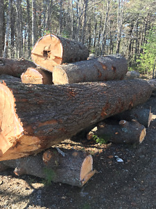 Logs for Sale, Ash and Pine