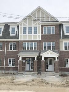 Brand New 4 Br Townhouse for Rent in pickering (Taunton/Whites)