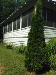 Charming Gatineau Cottage - FOR RENT