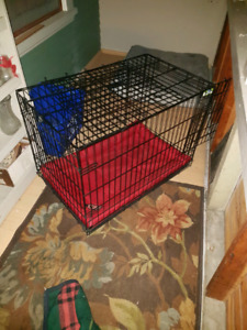 Large Dog Crate and Kong Bed