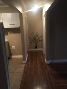 2 Bedroom Apartment in Old Dorion