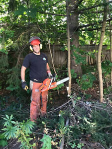 Chainsaw for hire