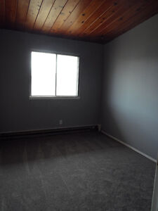 SOUTH CENTRAL LARGE 1-BEDROOM APARTMENTS - FREE INTERNET