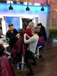Hairstylist Experienced - Yorkville Salon - PLUS TV Work