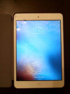 iPad Mini 2 16G