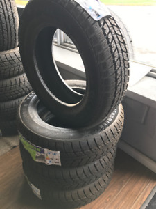 175/65R14 Evergreen Winter EW62