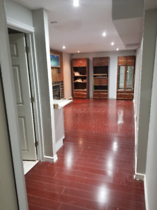 Awesome Brand New Basement Rental - Ajax